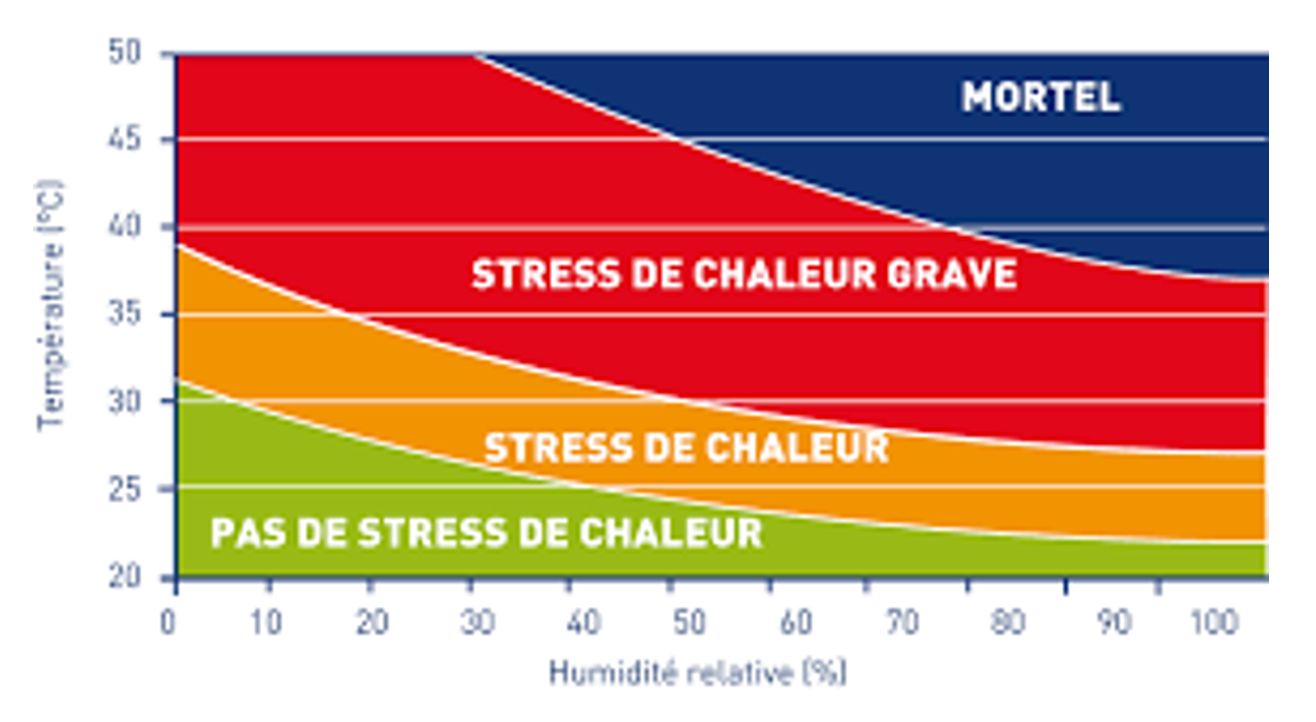Nutriprof stress thermique