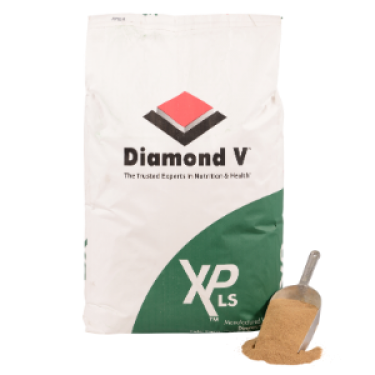 Diamond V XP